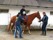 Zkousky_koni_EPONA_10_2011 (12)