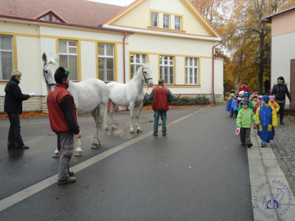 Zkousky_koni_Lecebna_Kosumberk_09_2012 (14)