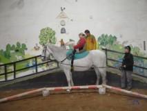 Zkousky_koni_Lecebna_Kosumberk_09_2012 (17)