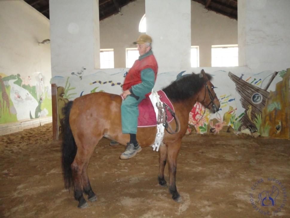 Zkousky_koni_Lecebna_Kosumberk_09_2012 (7)