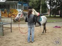 zkousky_koni_PL_Havlickuv_Brod_07_2012 (9)